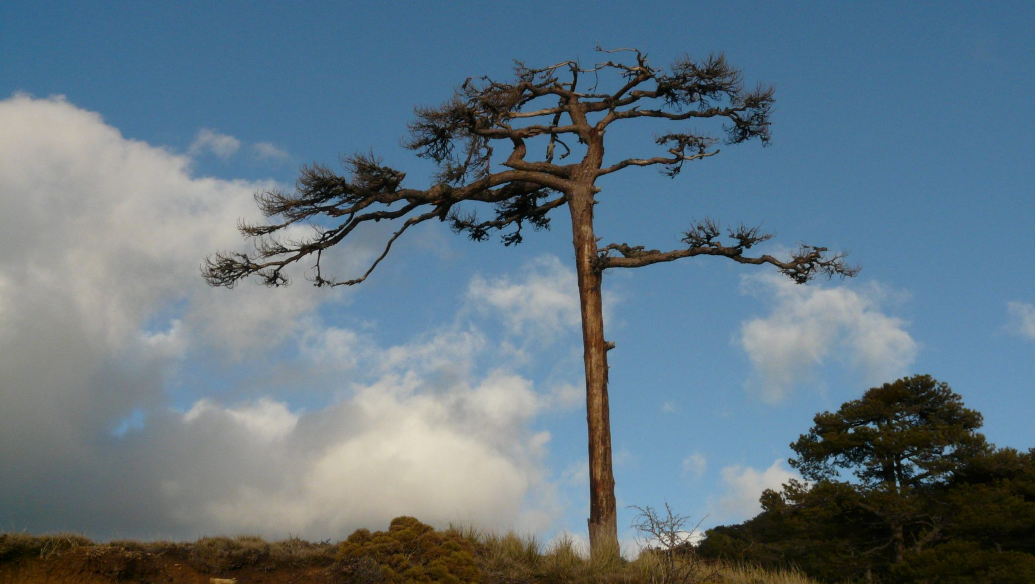 El Parque Natural renueva la Carta Europea de Turísmo Sostenible.